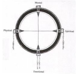 medince wheel human nature