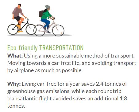 Eco friendly transportation