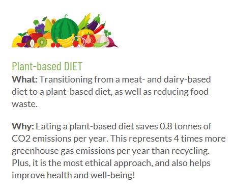 Plant base diet